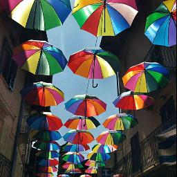 colorful colors umbrella umbrellas organizer