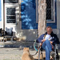 realaxingmoments warmsunnylight shadows pets companionship