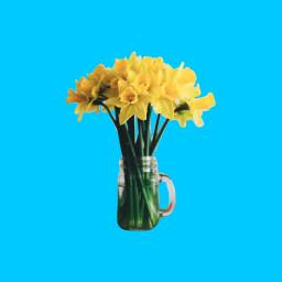 freetoedit flower interesting remixit art dpcasingleflower dpcwomen