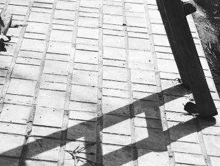 blackandwhite photography shadow freetoedit