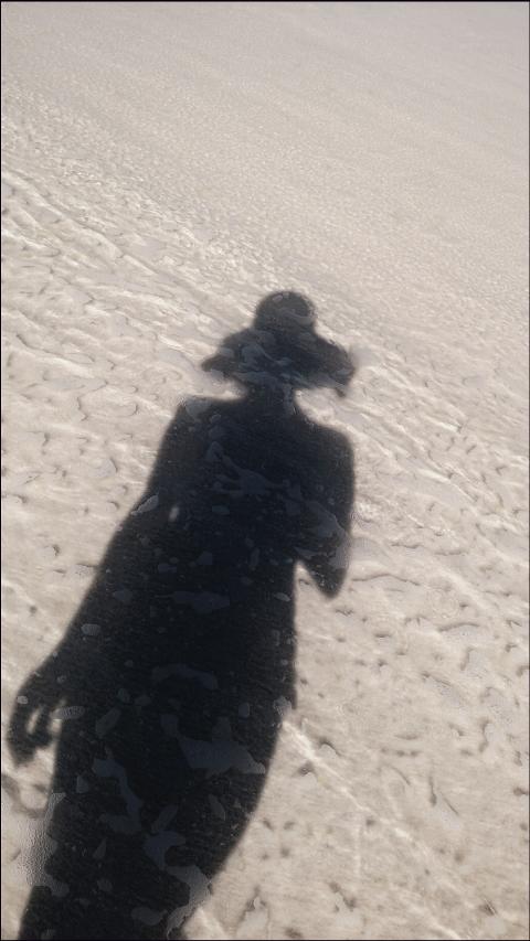 #blackandwhite,#beachlife,#freetoedit